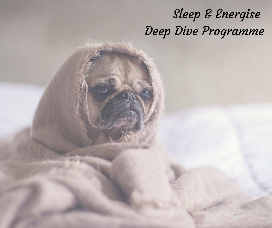 Transition Nutrition Sleep And Energise Deep Dive Programme